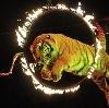 Цирки в Аткарске